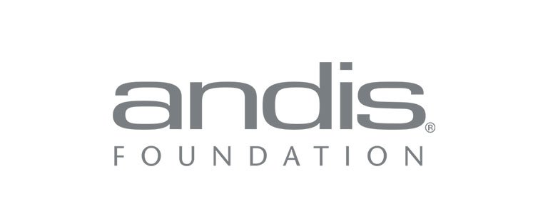 andis foundation